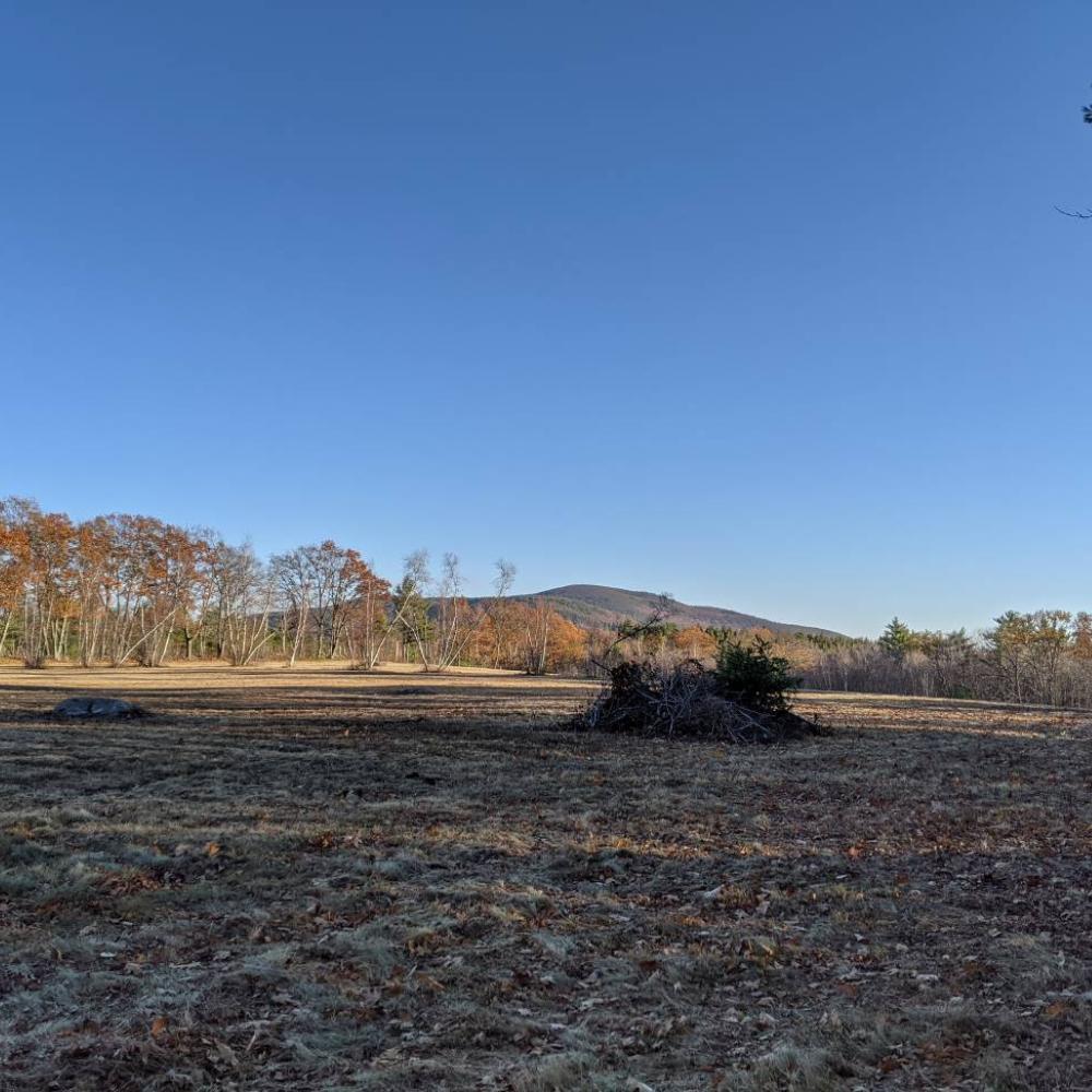 Kathryn's Field